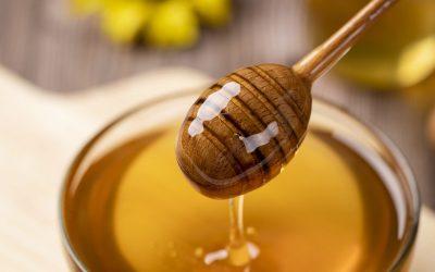 honey, wild, bee-4770245.jpg
